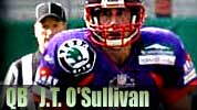 photo 49ers qb J.T. O'Sullivan